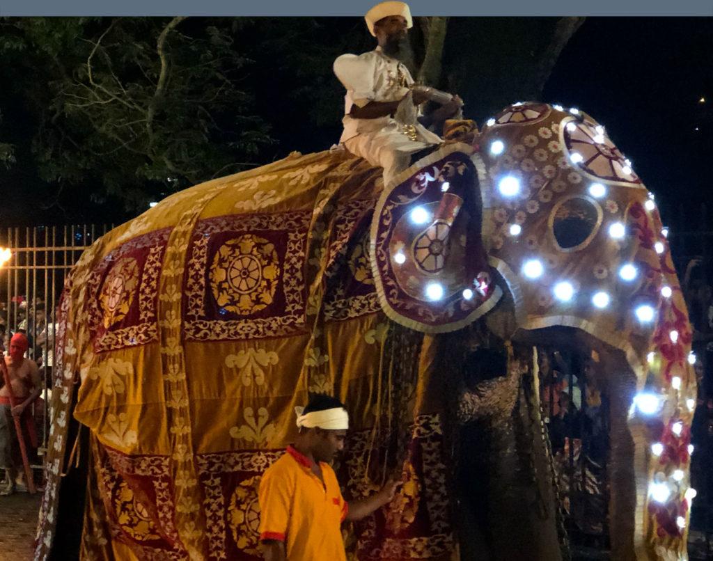 Sri Lanka Elephant Parade
